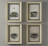 Vintage Nest Egg Art - Set Of 4