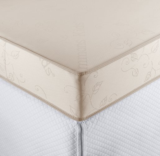 Soy Crib & Toddler Mattress