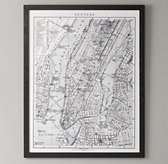 1900's Lithograph Map – New York