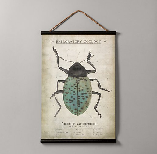 Entomology Tapestry - Beetle