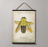 Entomology Tapestry - Bee