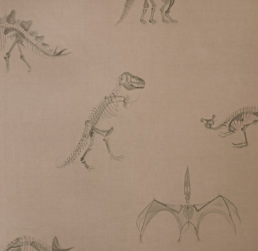 Dinosaur Fossil Bedding Swatch