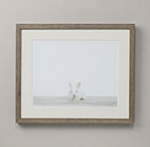 Baby Animal Portrait - Bunny