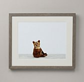 Baby Animal Portrait - Bear