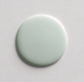 Eco-Friendly Interior Latex Paint - Bright Silver Sage