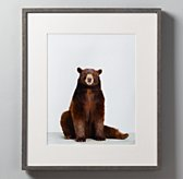 Animal Portrait - Bear
