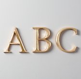 Antiqued Gilt Wood Letters