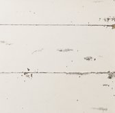 Wood Swatch - Vintage French White
