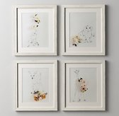 Botanical Photography Set of 4