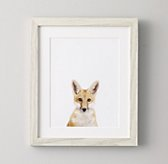 Baby Animal Portrait - Fox