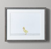 Baby Animal Portrait - Duckling